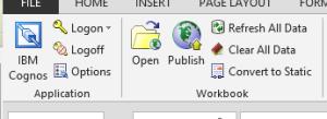 IBM_COGNOS_Office_Excel_4